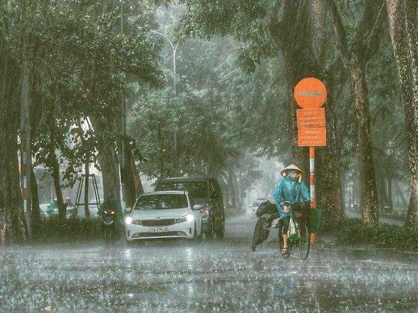 Nằm mơ thấy mưa đánh con gì dễ trúng, báo hiệu điềm gì
