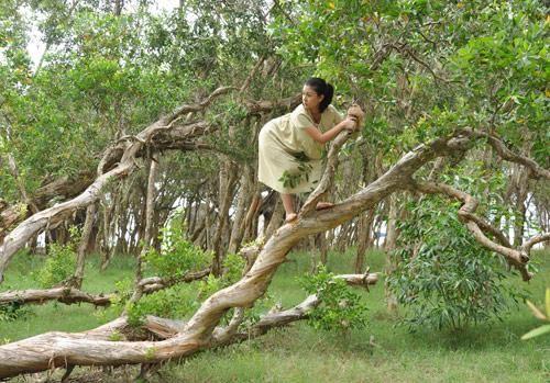 Mơ thấy trèo cây điềm báo gì đánh số gì thì trúng lớn